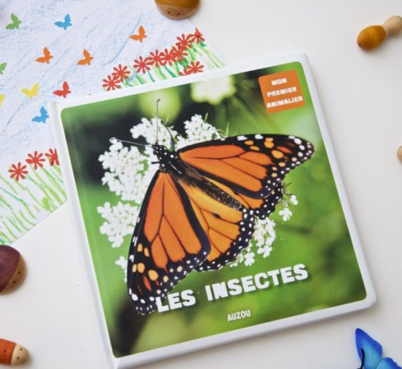 Lecture : Les insectes (collection « Mon premier animalier » – Auzou)